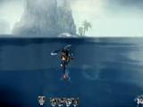 9.坤族游泳