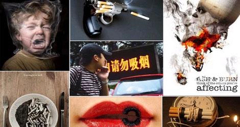 2012世界无烟日