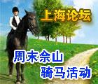 松江周末骑马烧烤召集中