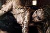 黑丝下的赤裸酮体
