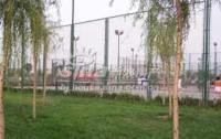 龙冠润景 实景图 龙冠体育公园