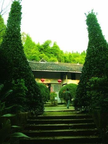 果树林立的偏远乡村农家小院-山村农家 植物园