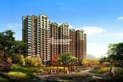 北京城建红木林