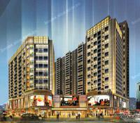 铂顿国际公寓均价破2万 投资客占主导