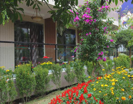 私家小花园设计实景 别墅小花园实景 私家庭院设计实景
