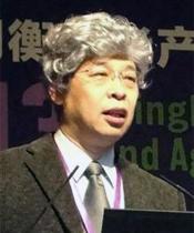 北京清华同衡规划设计研究院副院长 袁昕