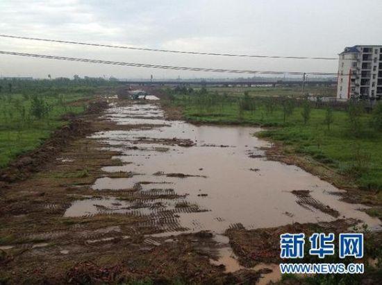 浠水县散花镇位于长江边,2012年被纳入湖北省鄂东滨江新区的散花镇