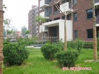 北京香颂 实景图 绿化实景图