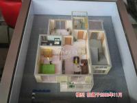 新龙城 实景图 模型实景图