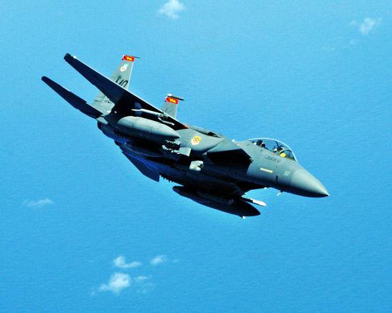 报道称美空军购买的假冒伪劣微处理机被用在了F-15战斗机的飞行操控电脑上。资料图:美国空军F-15E战机