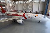 新浪微博号彩绘飞机挺在机库
