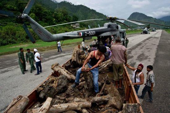 一架飞机正在装卸木头