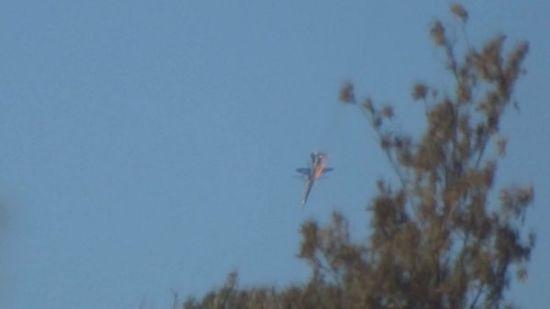 土耳其空军F16击落了叙政府军1架米格23战机