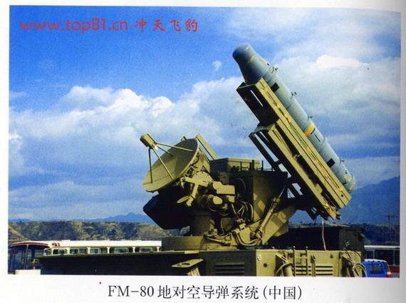 图文:少见的中国飞蠓80地空弹
