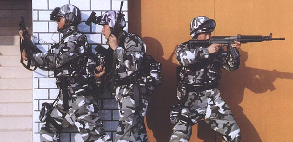 图文:装备拐弯瞄准系统的解放军空降兵小队