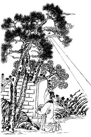 手绘双杆柏树图