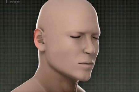 脸部解剖结构图解