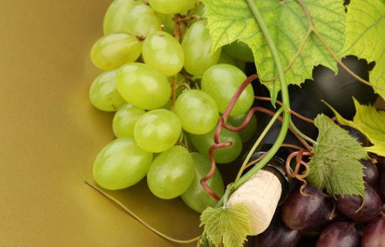 苹果酸与酒石酸一样,是葡萄中主要的有机酸之一。