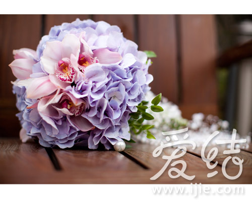 粉紫色绣球手捧花-五瓣花
