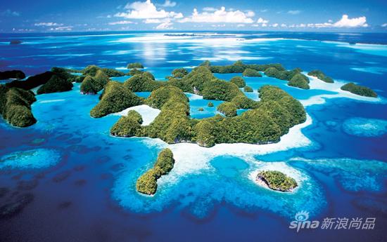 水母湖是帕劳岛上70多个类似咸水湖泊群中的一员