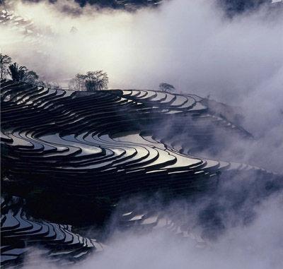元阳梯田已经蓄上了水,波光粼粼