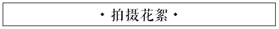 老师好第六期:吕绍聪教你制作冰糖葫芦_新浪时尚_新浪网
