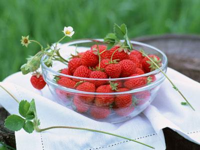 草莓纵切的结构图
