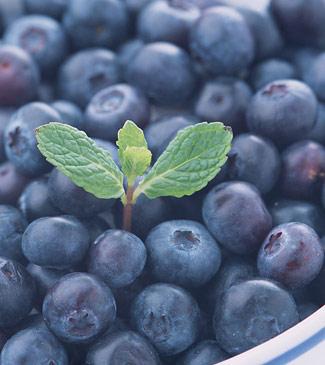 蓝莓 蓝色水果