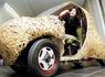 零排放的电动汽车