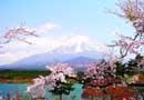寻访日本美丽学府