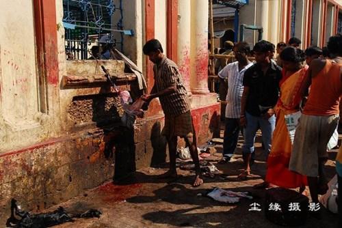 迦梨女神庙里宰杀羊羔祭祀的血腥场面