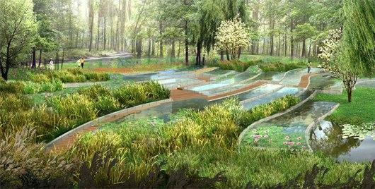 湿地景观节点手绘