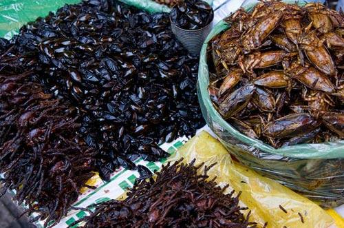 市场油炸昆虫