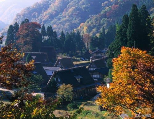 秋天的富山 宛如画笔绘就的红叶之美