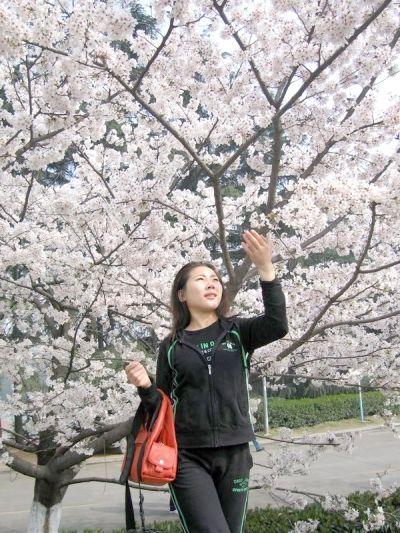 武汉大学的樱花总让人陶醉