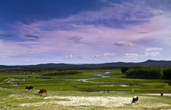 希拉穆仁大草原 内蒙古上的绿宝石