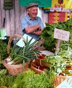 去新西兰体验农贸市场的无穷乐趣