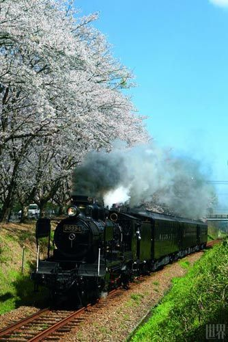 九州温泉火车之旅