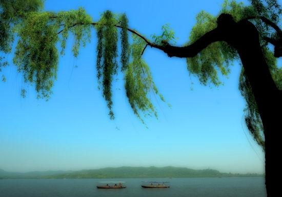 新浪旅游配图:西湖美景 摄影:杭居易