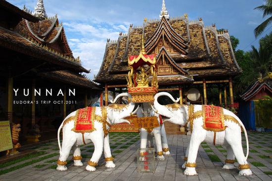 古寺前的大象