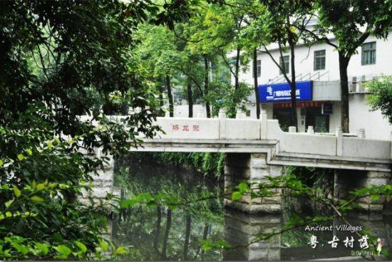 青青水面的水渠