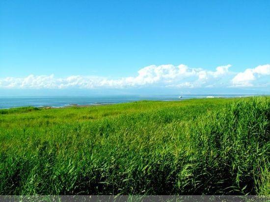 博斯腾湖的美丽的传说