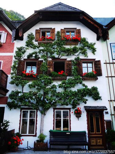 小鎮的窗台也是一道藝術風景線