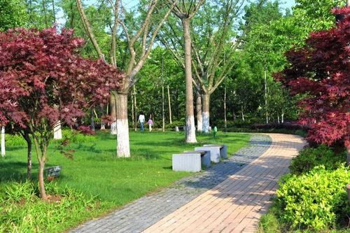 宝界森林公园