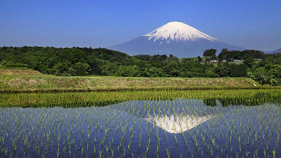日本,雪顶覆盖的恬静之美