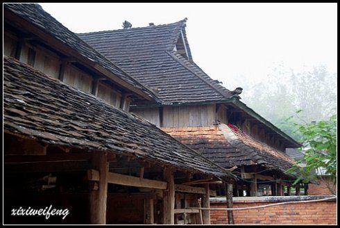 一幢幢傣家竹楼那尖尖的屋顶,在菩提树嫩绿树叶的掩映下,显得别有风味