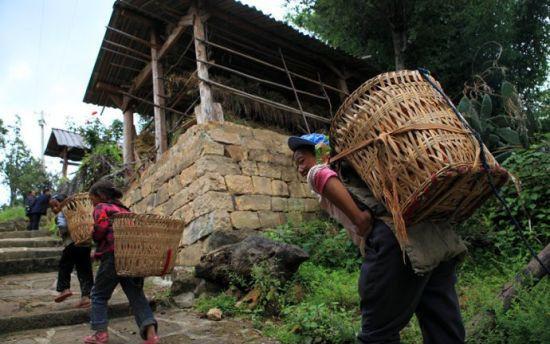 背着玉米回家的农民(图片来源:飞鸟与鱼)