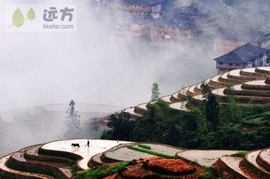 雾锁深山 图/清明谷雨