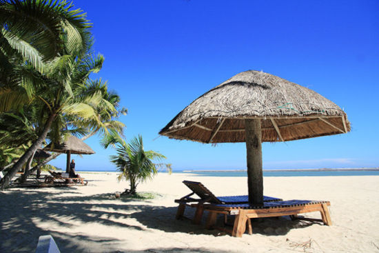 阳光沙滩椰子树