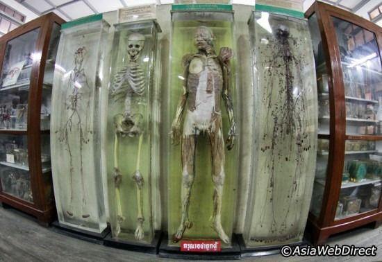 尸体解剖_世界十大差评景点:泰国,美国和丹麦